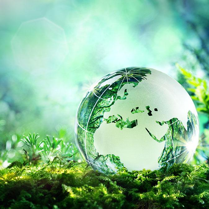 mondo-green